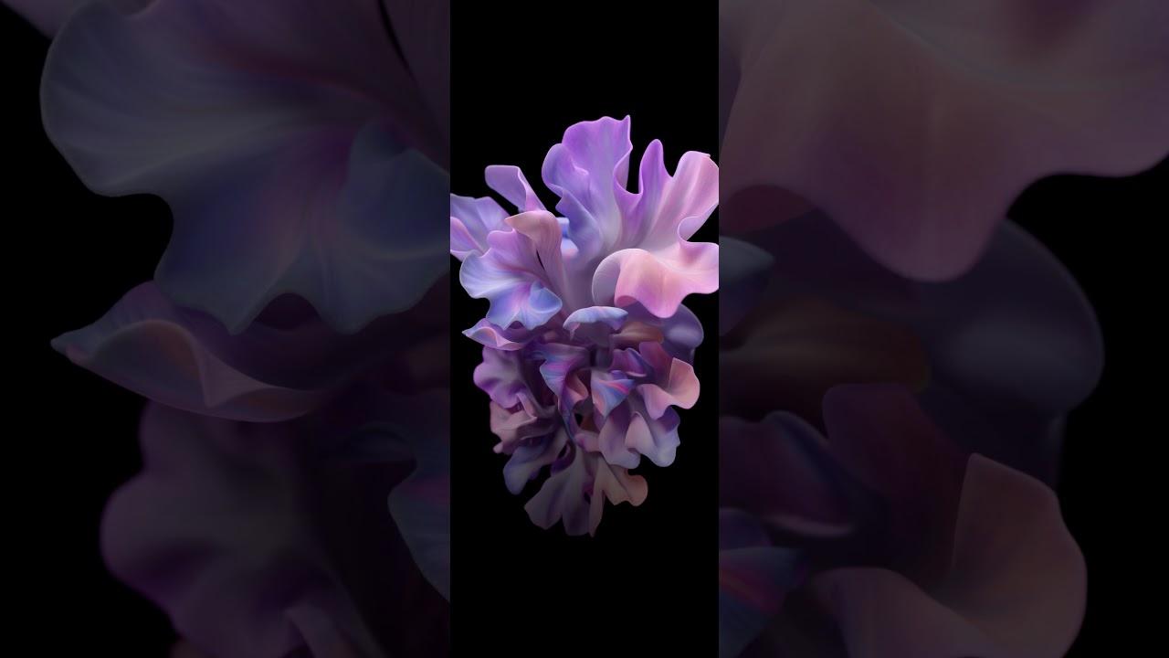 Samsung Galaxy Fold Z Flip Live Wallpaper 4k Ultra Youtube