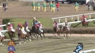 2008年12月6日 阪神4R 障害未勝利 スズカジョリーズ