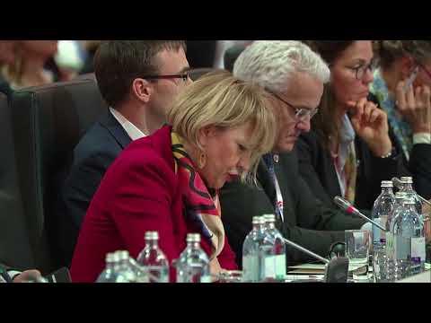 #OSCEMC17 First Plenary Session: ESTONIA and EUROPEAN UNION