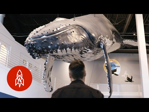 A Whale Of A Task: Sculpting Model Giants By Hand