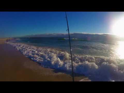 Nj surfcasting 25 lb striped bass during surf bunker for Surf fishing nj license