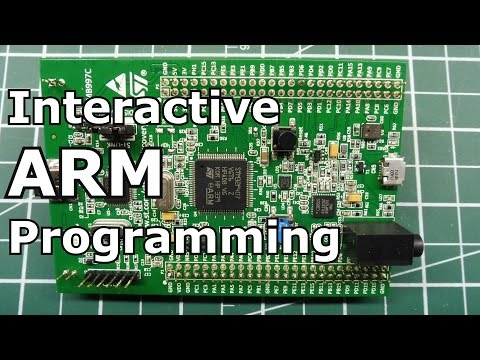 Interactive ARM programming /  Random Number Generator