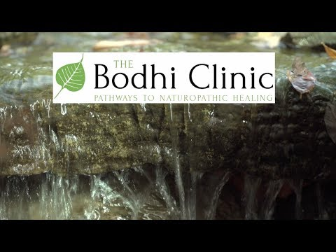 The Bodhi Clinic - Pathways to Naturopathic Healing