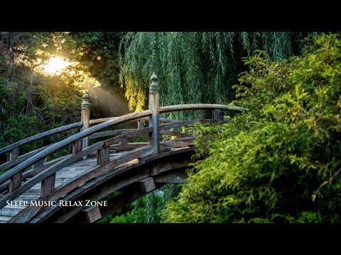 Calming Music: Music to Sleep, Finest Meditation Music, Relaxation in Nature, Zen Garden ♩S09