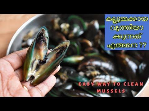 എളുപ്പത്തിൽ കല്ലുമ്മക്കായ വൃത്തിയാക്കുന്നത് എങ്ങിനെയെന്ന്  നോക്കിയാലോ ||easy way to clean mussels