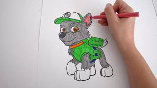 Paw Patrol puppy Rocky | Learn different colors with Rocky | Rocky de la Patrulla Canina