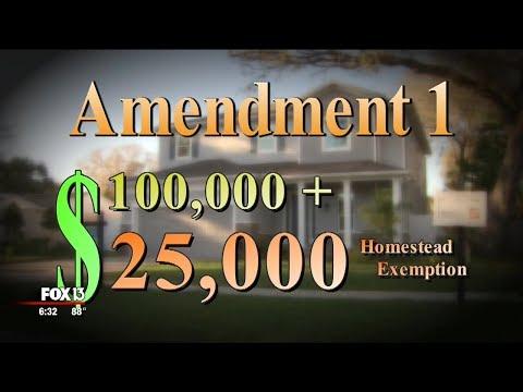 Florida's proposed constitutional amendments explained: Amendments 1 & 2