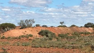Part 4 of my gold adventure to the Western Australia goldfields