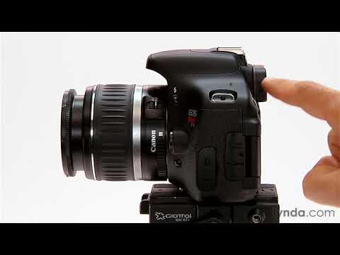 Understanding the single lens reflex (SLR) camera | lynda overview