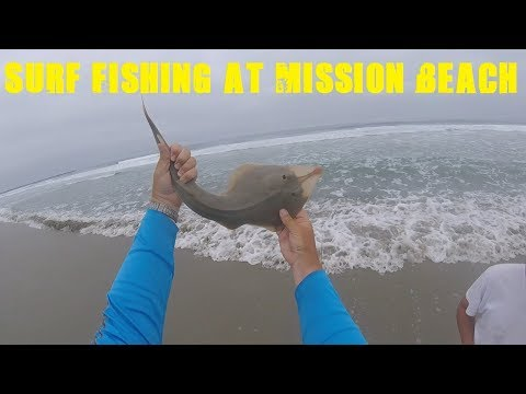Arizona Anglers Go To San Diego | Surf Fishing for Surf Perch, Corbina and Shovelnose