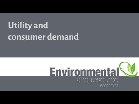 Utility and consumer demand