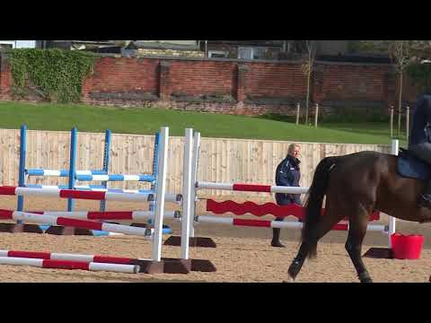 British Showjumping Training - Stepping up to Newcomers Part 4 Linking fences on a dog leg