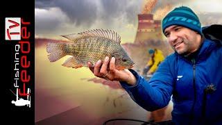 Зимняя рыбалка 2020 на фидер. АТОМНАЯ рыбалка. РЫБА рвет леску. 4K Feeder Fishing TV
