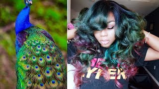 Peacock Hair Color + Yiroo Hair |Color tut.