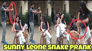 Snake Prank With Sunny Leone | Sunny Leon's Reaction Will Make You Lol | M Bros Reactions
