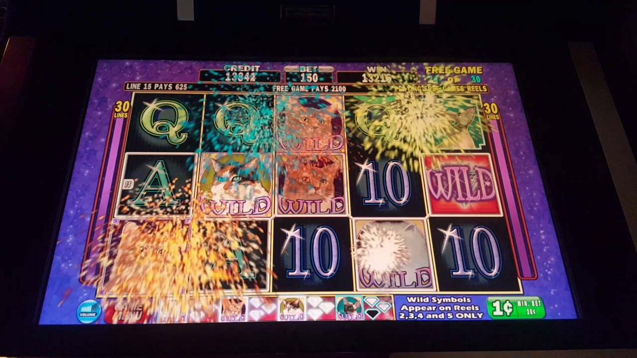 Kitty Glitter Slot Machine Max Bet Bonus Retrigger Big Win
