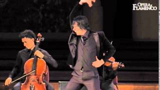 Opera y Flamenco - What we do (02)...