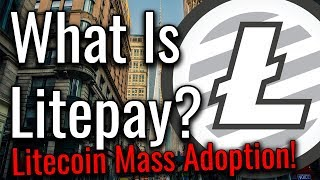 What Is LitePay & How Does It Work? Mass Adoption Incoming! (Correction in Description)