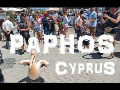 Attractions and Things To Do at Paphos