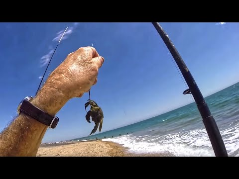 Tackle Shack! | Sea Fishing With Crab Bait | Beach Scavenging (Treasure Found!)