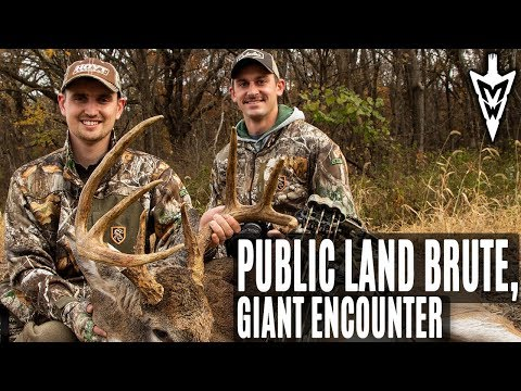 Calling In A Public Land Brute, Encounter With A Giant | Midwest Whitetail