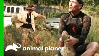 Gator Face-Off in Snake-Infested Waters | Gator Boys