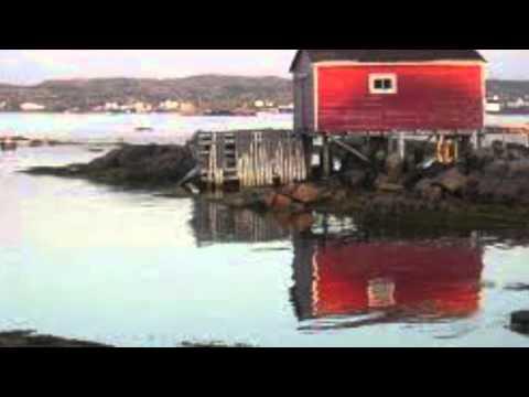ENVS 3440: The North Atlantic Cod Fishery