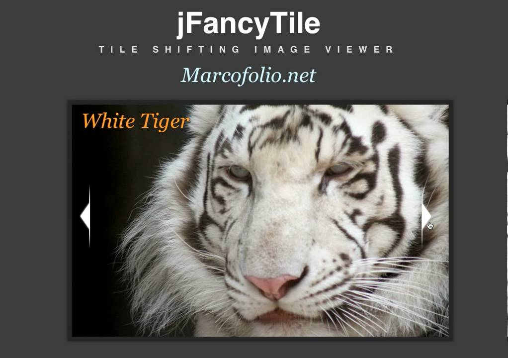 jFancyTile: A jQuery tile shifting image viewer plugin