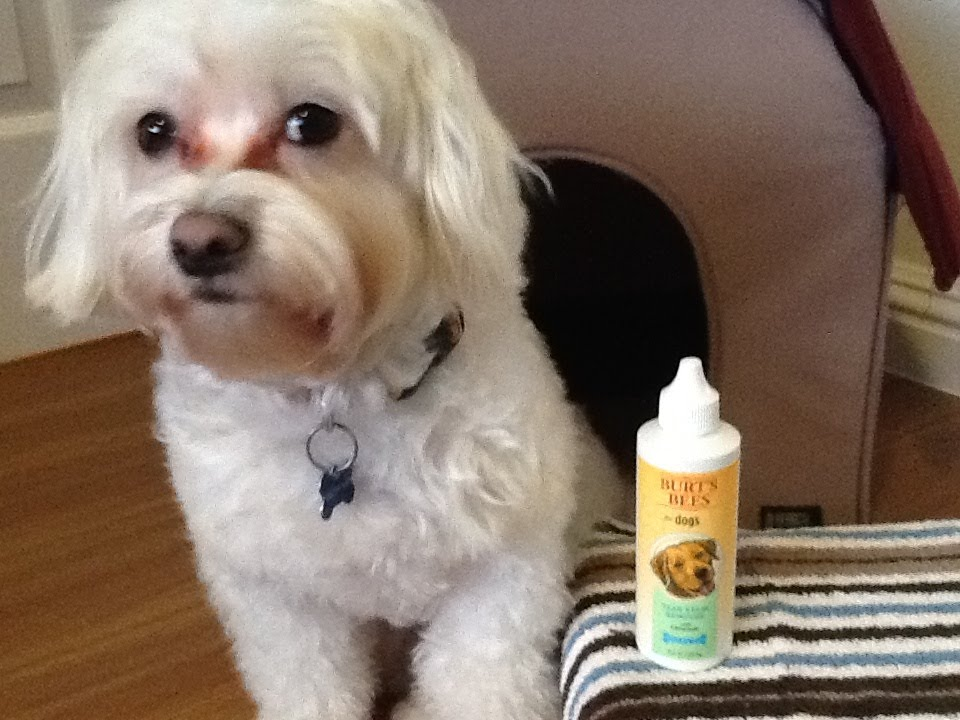 dog eye stain remover