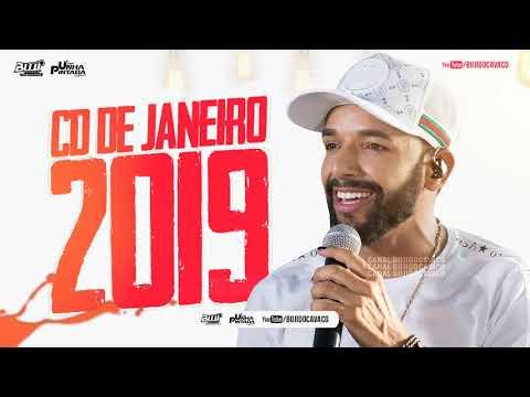 UNHA PINTADA NOVO 2019 - MÚSICAS NOVAS (REPERTÓRIO ATUALIZADO) VERÃO