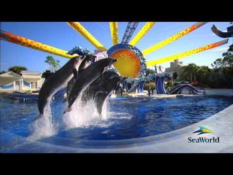 Orlando y Seaworld Programa con Avianca
