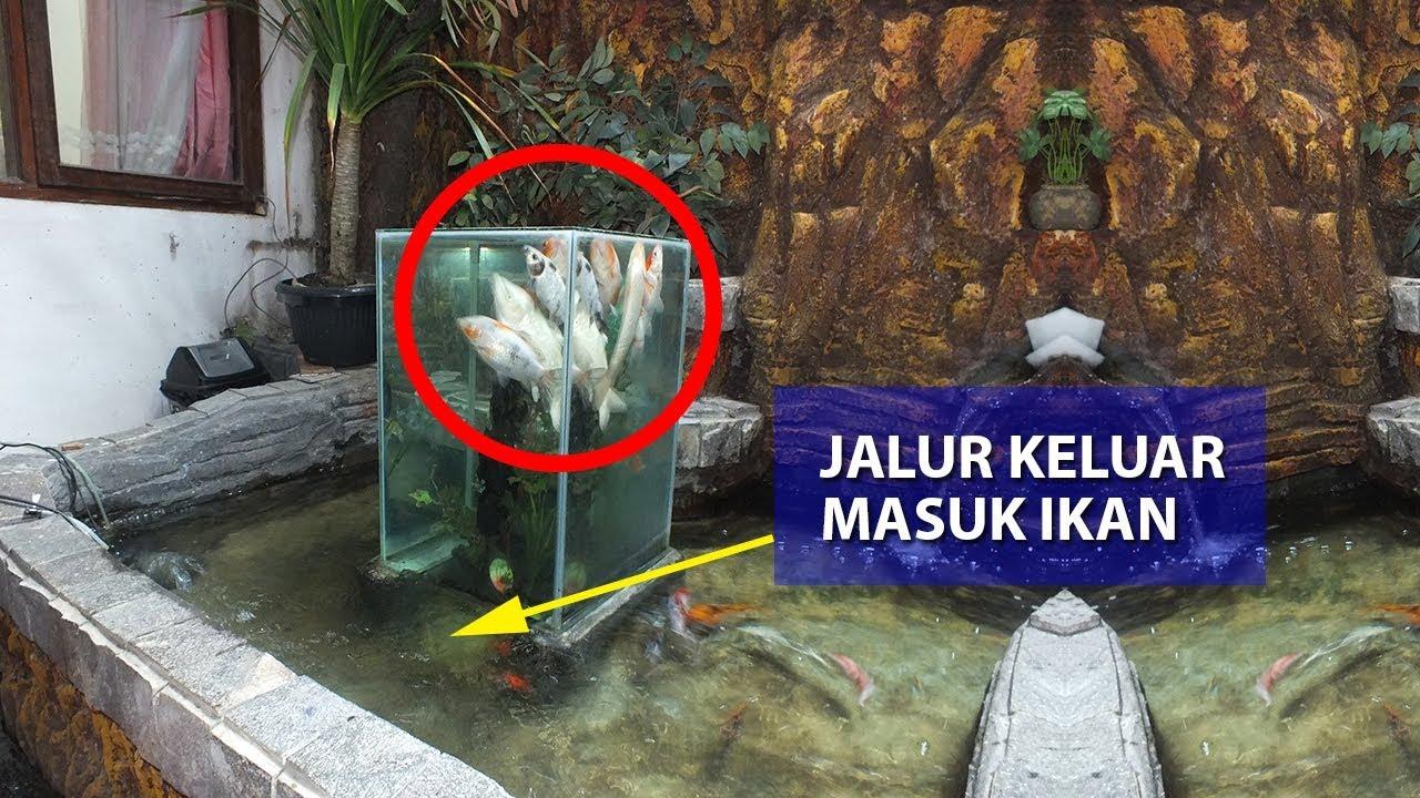 Akuarium Terbalik di Atas Kolam Hias  Inverted Aquarium