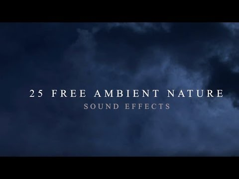 Download Nature Ambience Background Sound Effects Free Stock