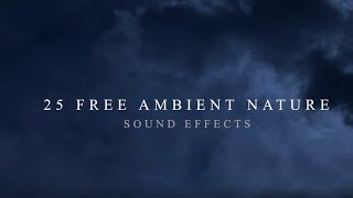 25 FREE Ambient Nature Sound Effects | Royalty Free Sound Effects | Cinematic Sound Effects