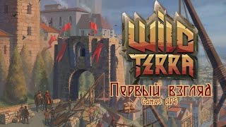 Wild Terra Online Alpha   Первый взгляд и первые шаги