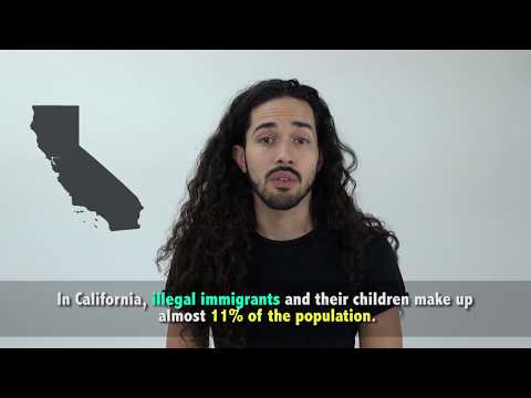 Actors Cold Read Facts on Illegal Immigration off of a Teleprompter
