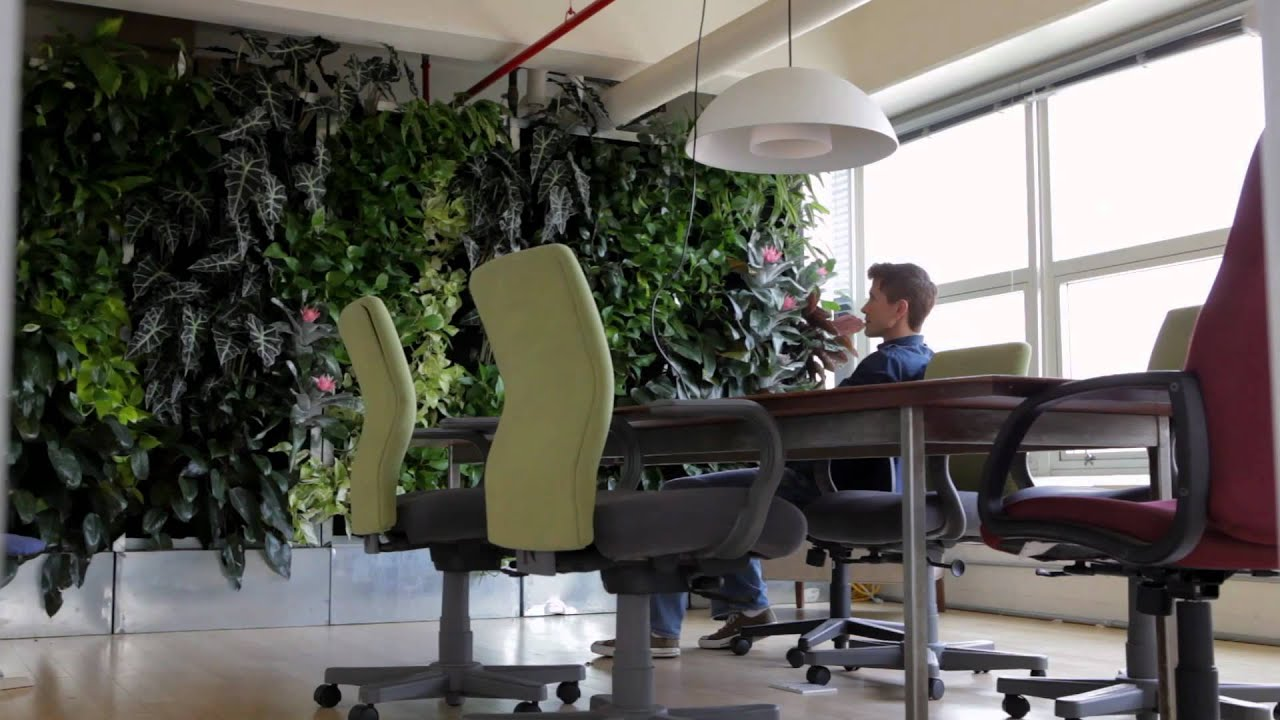The indoor office garden navy yard urban gardener video for The garden office