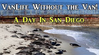 VanLife Without the Van!  A Day in San Diego