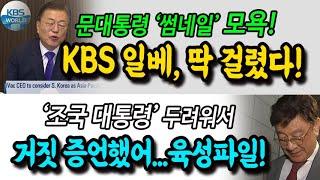 KBS 일베, 잡았다! '조국 대통령' 두려워...거짓…