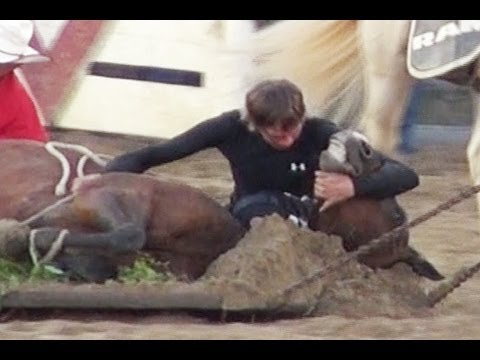 Exposed: Horse Killed at Cowtown Rodeo was Electro-Shocked