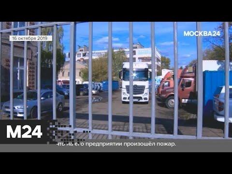 """""""Городской стандарт"""": сыр с антибиотиком - Москва 24"""