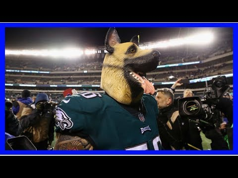 Eagles open as underdogs against Patriots in Super Bowl LII, but that may be good news