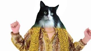 Pen Pineapple Apple Pen Song #CAT REMIX - CHEE YEE Teoh - PPAP