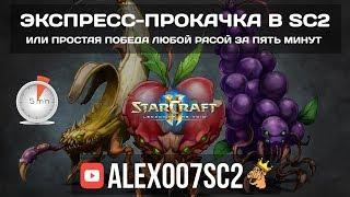 Экспресс-прокачка в StarCraft 2: Победа любой расой за 5 минут