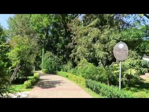 BOTANIC GARDEN BUDAPEST -  ME WALKING - ELTE UNIVERSITY
