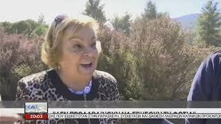 Σιθωνία: Δασική πυρκαγιά πλησιάζει σε σπίτια στην Σάρτη