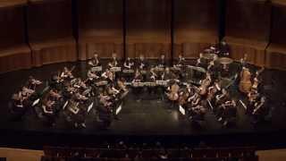 Beethoven, Symphonie n°4 - II. Adagio (extrait)