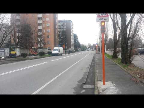 Pedone Sicuro Segrate Milano