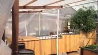 Update: VermiFarms Horticulture Aquaponics Combo Garden, Grass Valley / Auburn, California