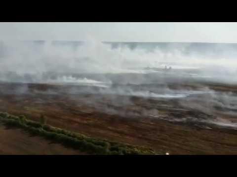 ТРК РИТМ: На півночі Рівненщини спалахнули масштабні пожежі